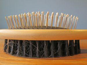 Doppelbürste mit ausgegangenen Haaren