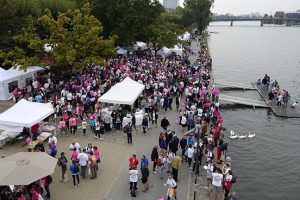 Blick von oben auf Stände und Teilnehmer am Mainufer